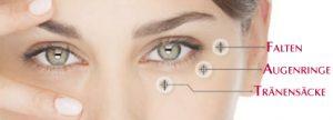 eye_logic_augen